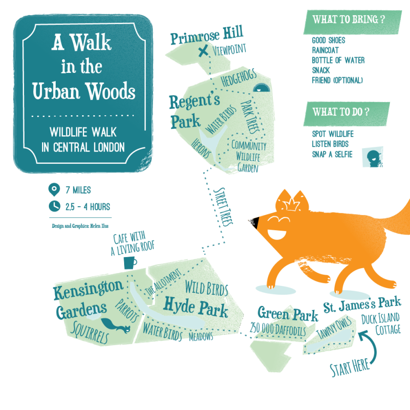 A Walk in the Urban Woods