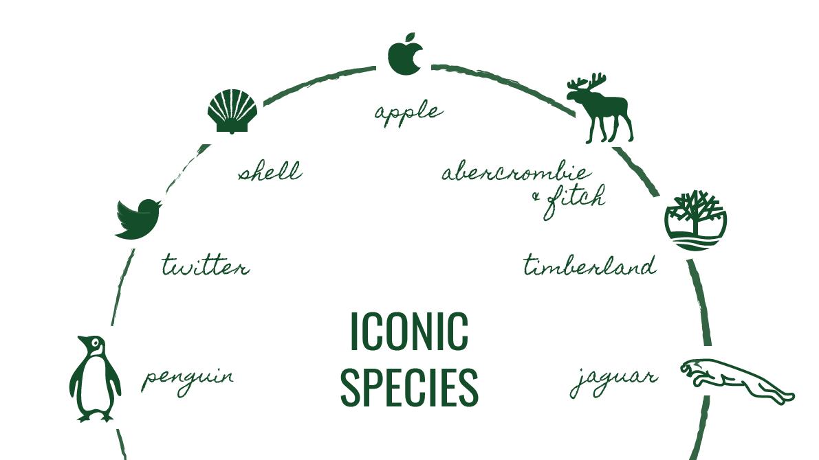 Graphic of iconic logospecies